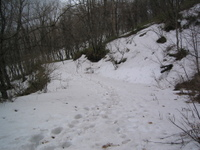 2008413_11