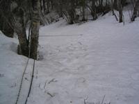 2008413_75